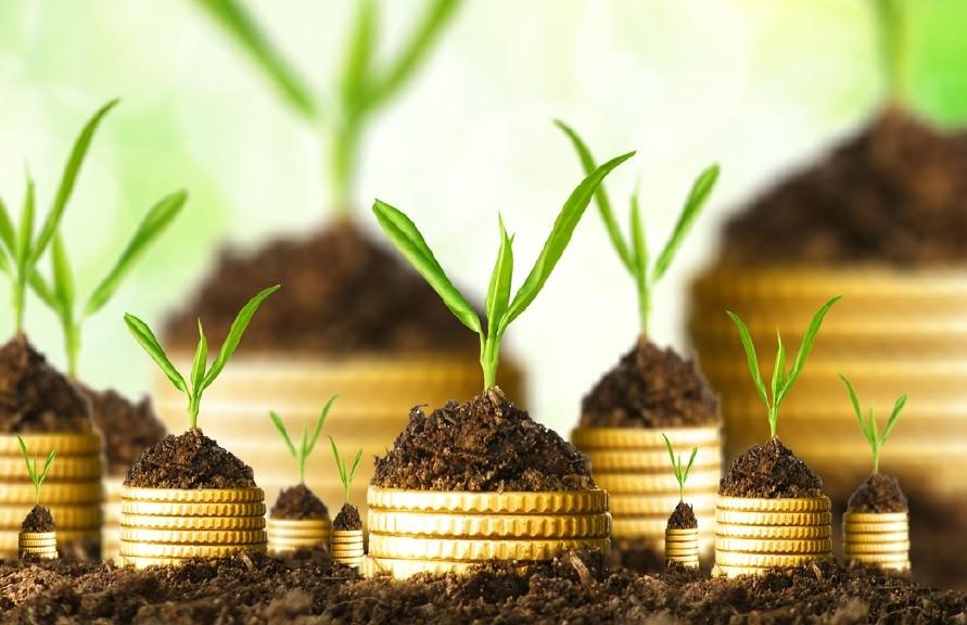 investment الاستثمار